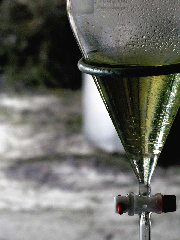Glistening repose, newly distilled essential oil waits  for decanting into an amber glass bottle for cellaring.