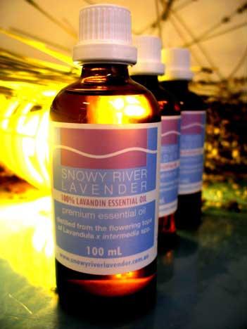 Lavandin Essential Oil – L. x intermedia Abriallis  1