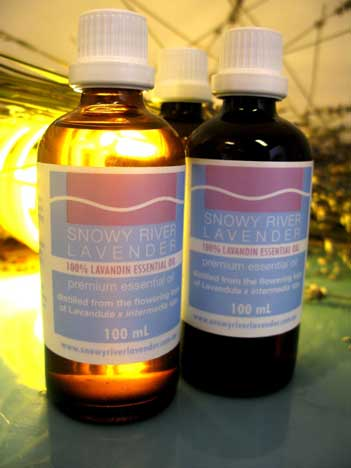 Lavandin Essential Oil – L. x intermedia Super  1