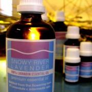 Lavandin Essential Oil – L. x intermedia Super  3