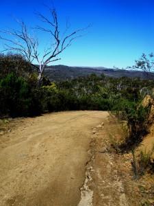 Majesse Estate's mountainous terrain